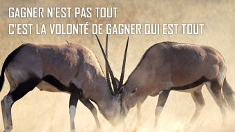 citation de vince lombardi