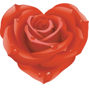 rose heart sticker