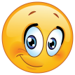 cute emoticon with half smile sticker